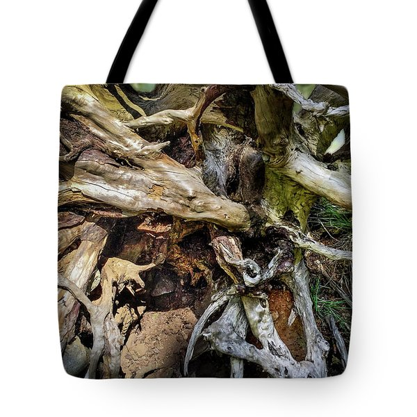 Tote Bag featuring the photograph Wood Log In Nature No.8 by Juan Contreras