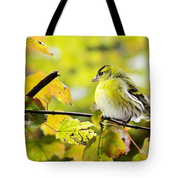 Tote Bag featuring the photograph Yellow Bird by Top Wallpapers