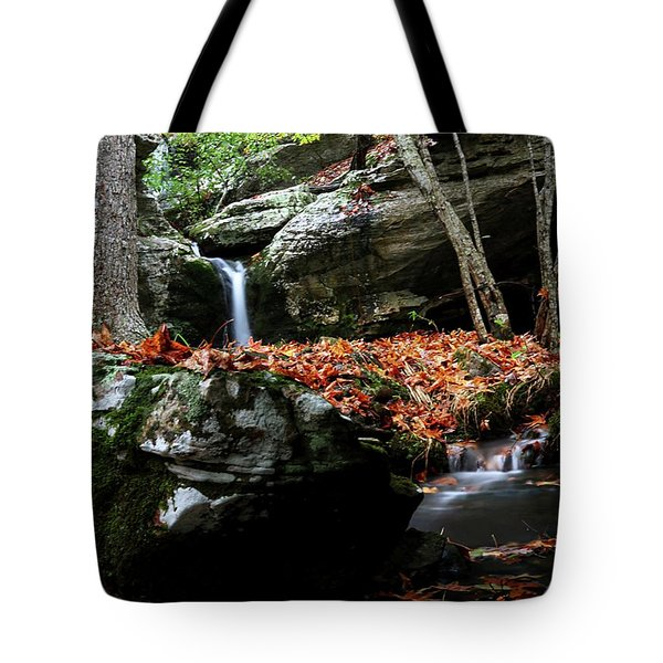 Yellow Cheek Valley Tote Bag
