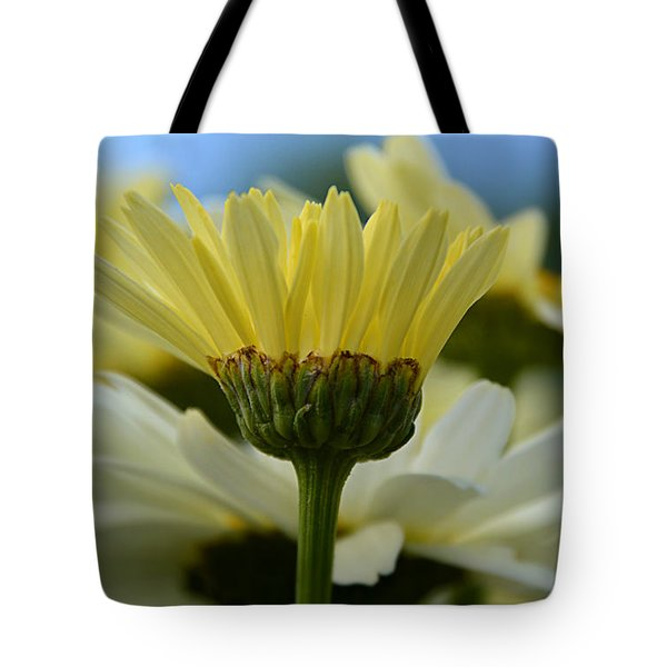 Tote Bag featuring the photograph Yellow Daisy by SimplyCMB