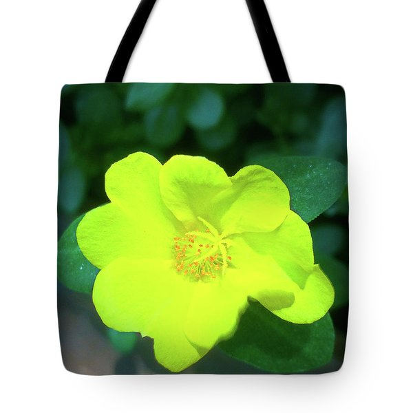 Yellow Hypericum - St Johns Wort Tote Bag