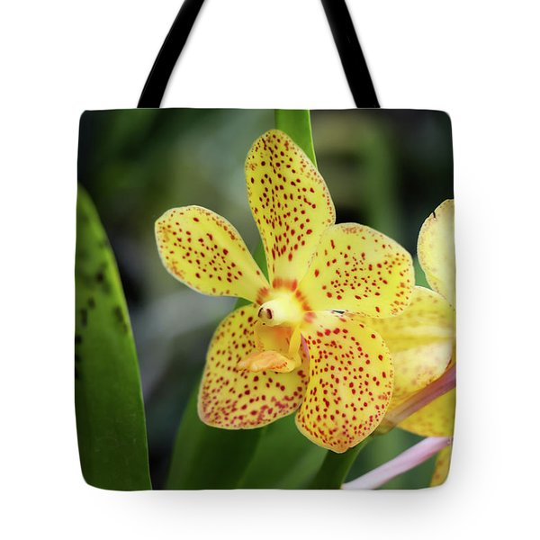 Yellow Spotted Orchids Tote Bag