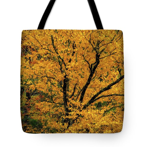 Tote Bag featuring the photograph Yellow Tree Leaf Brilliance  by Claire Turner