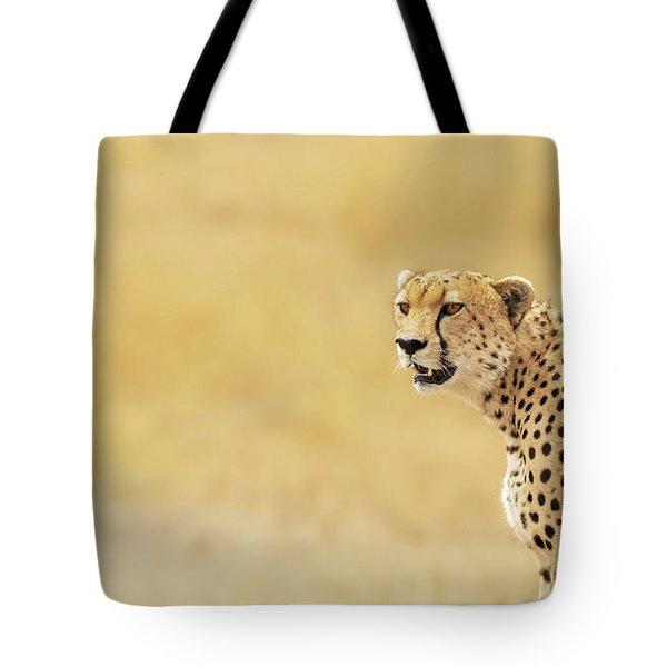 Young Adult Cheetah Banner Tote Bag