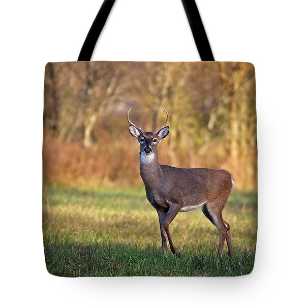 Young Buck Tote Bag