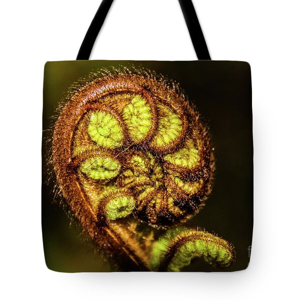 Young Fern Leaves Tote Bag