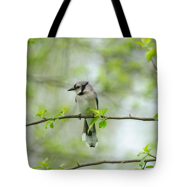 Young Jay Thinking Tote Bag