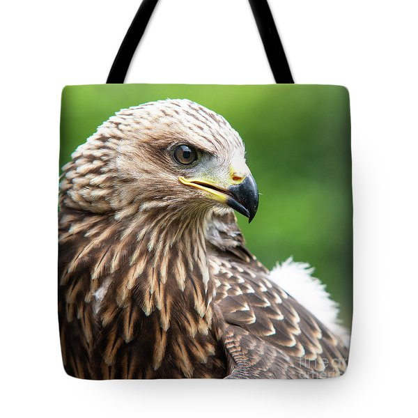Young Kite Tote Bag