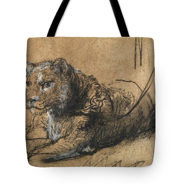 Young Lion Resting Tote Bag