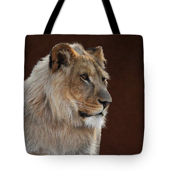 Tote Bag featuring the photograph Young Male Lion Portrait by Debi Dalio