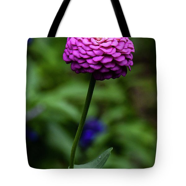 Tote Bag featuring the photograph Zinnia by Michael D Miller