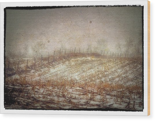 A Cold Field Wood Print