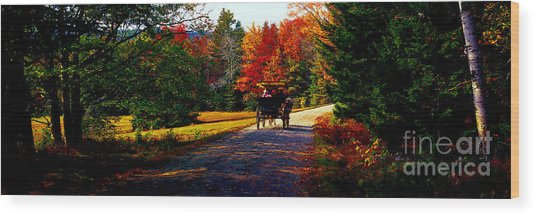 Acadia National Park Carriage Trail Fall  Wood Print