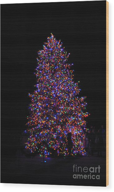 All Lit Up Wood Print by Jacqueline M Lewis