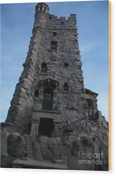 Alster Tower Wood Print