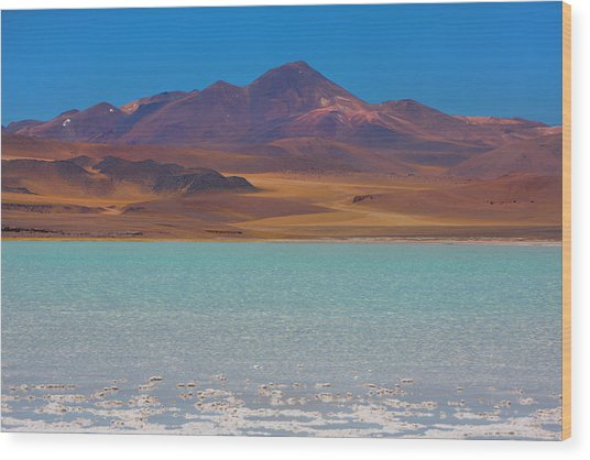 Atacama Salt Lake Wood Print