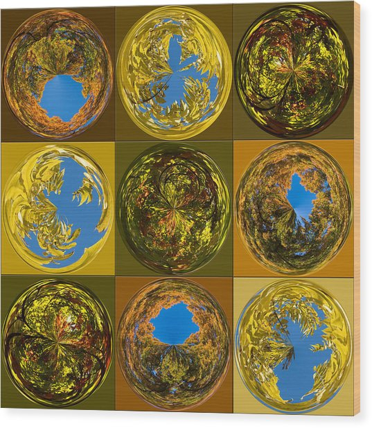 Autumn  Spheres Wood Print by Denise Beverly