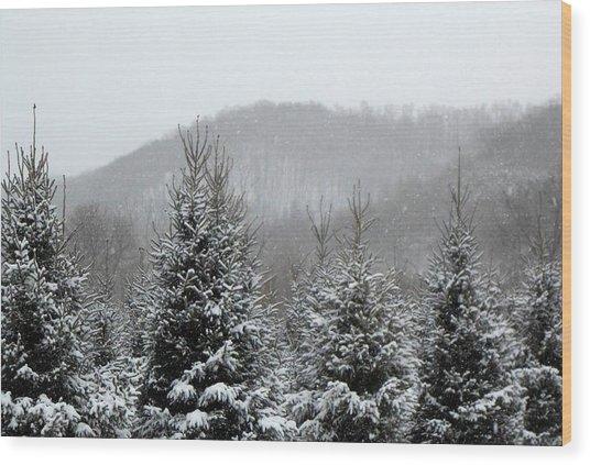 Driftless Pine  Wood Print by Dina  Stillwell