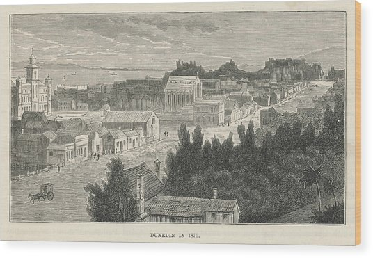Dunedin  General View        Date 1870 Wood Print by Mary Evans Picture Library