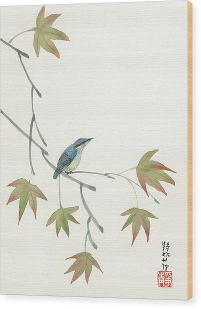Eurasian Nutchatch Wood Print