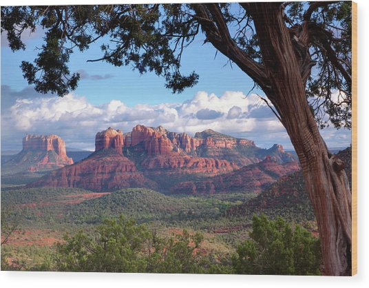 Evening Sky Red Rocks Wood Print