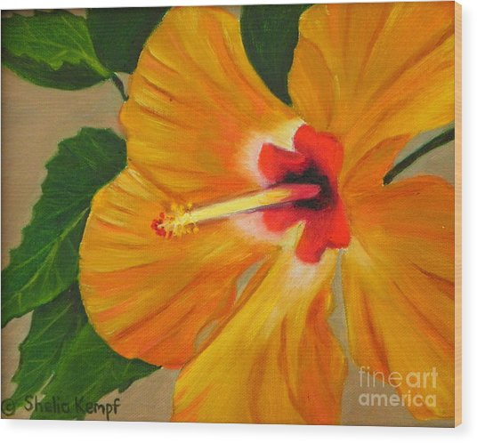 Golden Glow - Hibiscus Flower Wood Print
