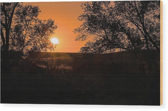 Hayfield At Night Wood Print