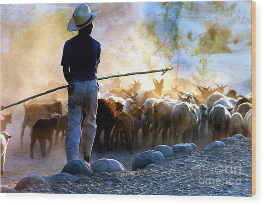 Herder Going Home In Mexico Wood Print