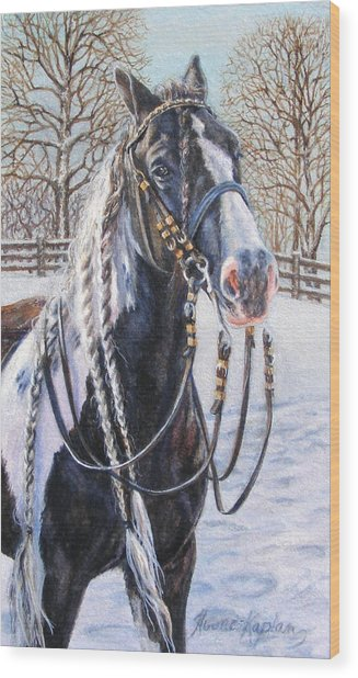 I'm Ready For The Ribbons Gypsy Vanner Horse Wood Print