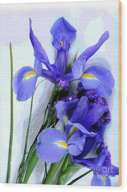 Iris -- Pretty In Purple-1 Wood Print