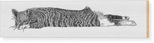 Skippy The Manx Cat Sleeping Wood Print