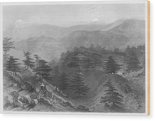 Mount Lebanon  The Famous Cedars Wood Print