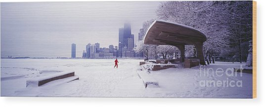 North Ave Beach Chess Palv Chicago Lake Front  Wood Print