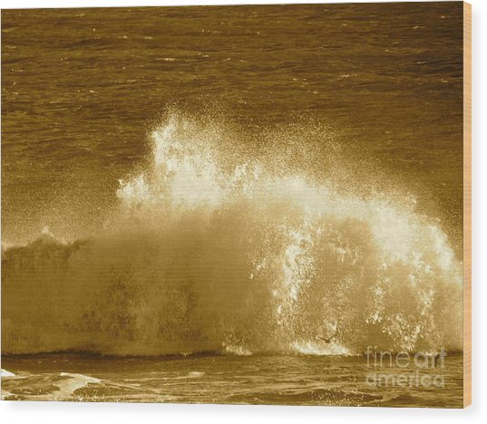 Ocean Life Remembers  Wood Print by Q's House of Art ArtandFinePhotography