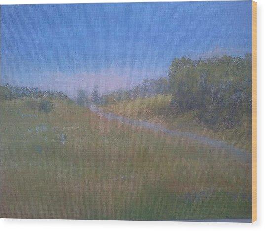 Our Lane In June Wood Print