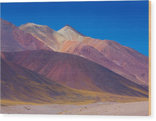 Painted Atacama Wood Print