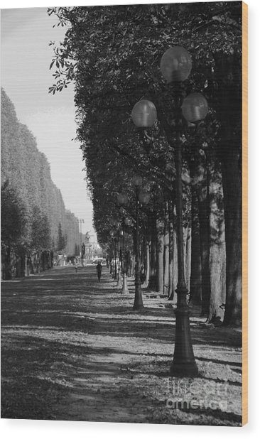 Paris - Peaceful Afternoon Bw Wood Print by Jacqueline M Lewis