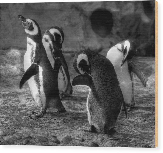 Penguin's Wood Print