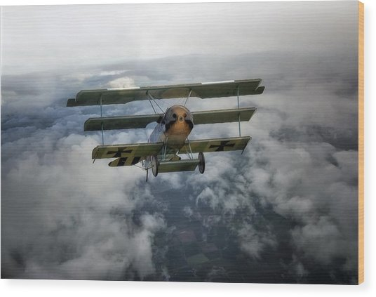 Pioneers Of Aviation Wood Print