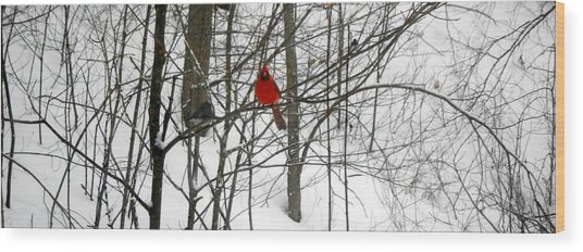 Red Wings In The Woodland Wood Print by Dina  Stillwell