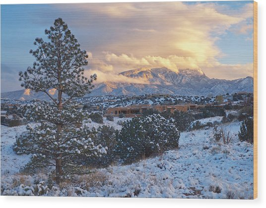 Sandia Mountains With Snow At Sunset Wood Print