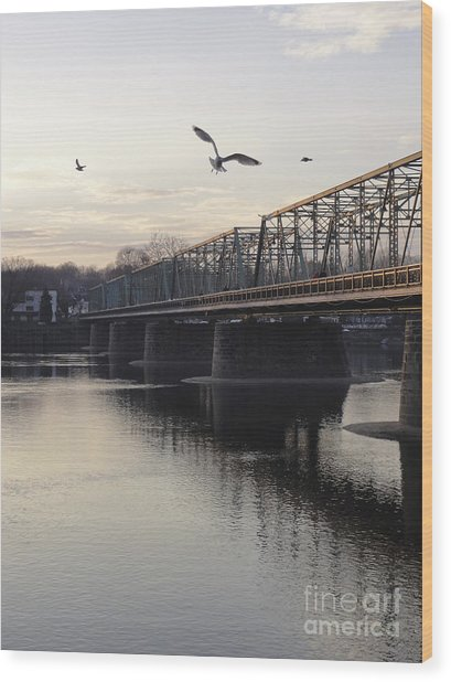Gulls At The Bridge In January Wood Print