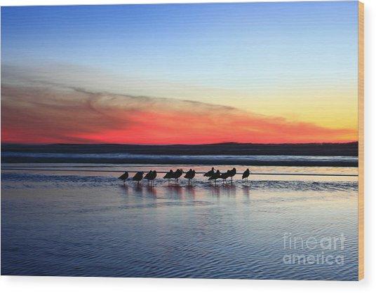 Shorebird Sunset Wood Print