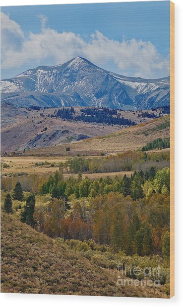 Wood Print featuring the photograph  Sierras Mountains by Mae Wertz