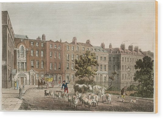 Soho Square, With Cattle         Date Wood Print by Mary Evans Picture Library