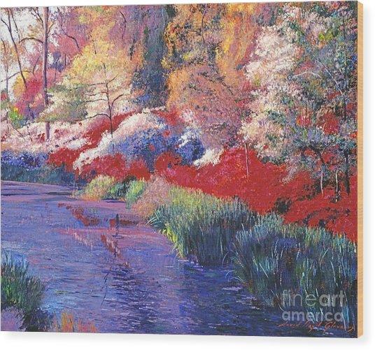 Spring Azalea Reflections Wood Print by David Lloyd Glover