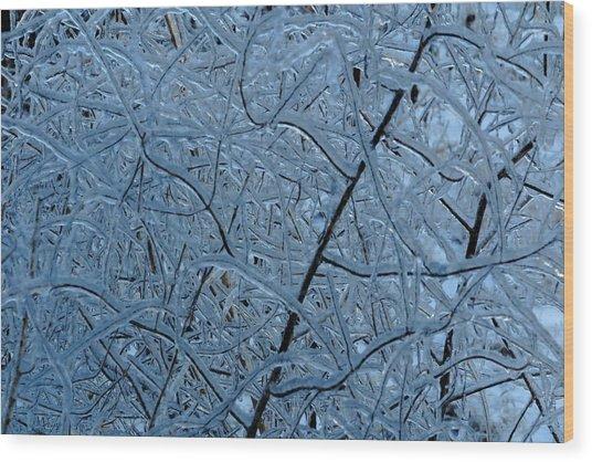 Vegetation After Ice Storm  Wood Print