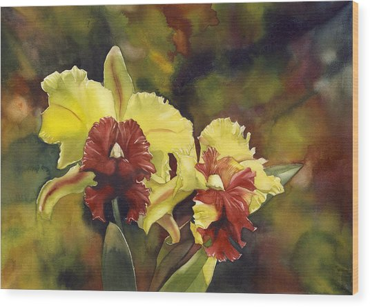Yellow And Red Cattleya Orchids Wood Print