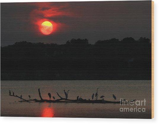 0016 White Rock Lake Dallas Texas Wood Print