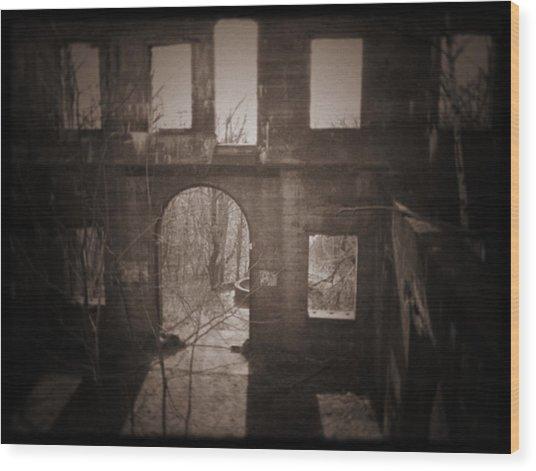 003 Wood Print by Laurentis Ure